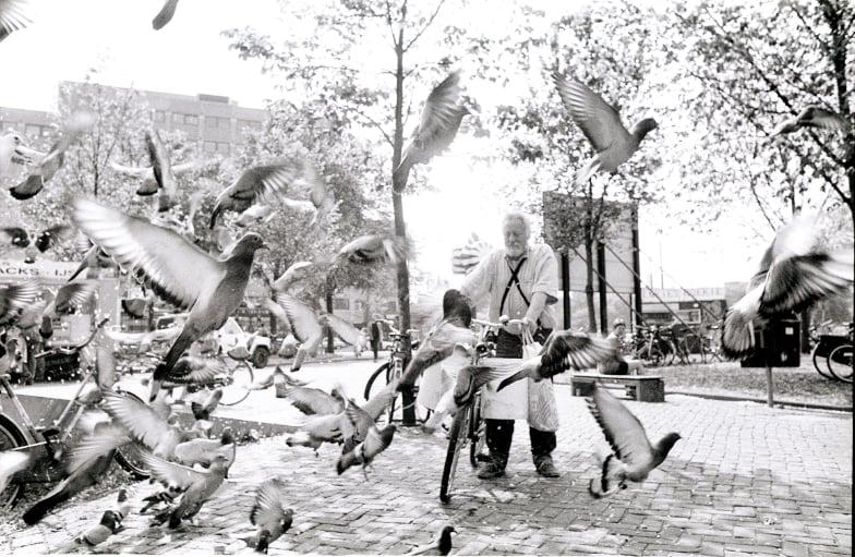 Foto van Gerard Fieret voor het Haags Straatnieuws terwijl hij bezig is met het voeren van de duiven in de Haagse binnenstad